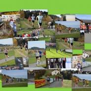 Bilder des Pesenbachtallaufes 2014