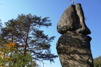 Das Pesenbachtal präsentiert sich heuer von seiner schönsten Seite………