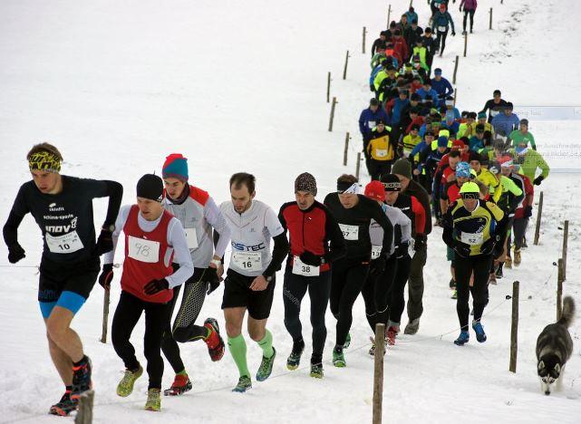 Schobersteinlauf1_ 2017